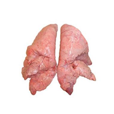 Бял дроб